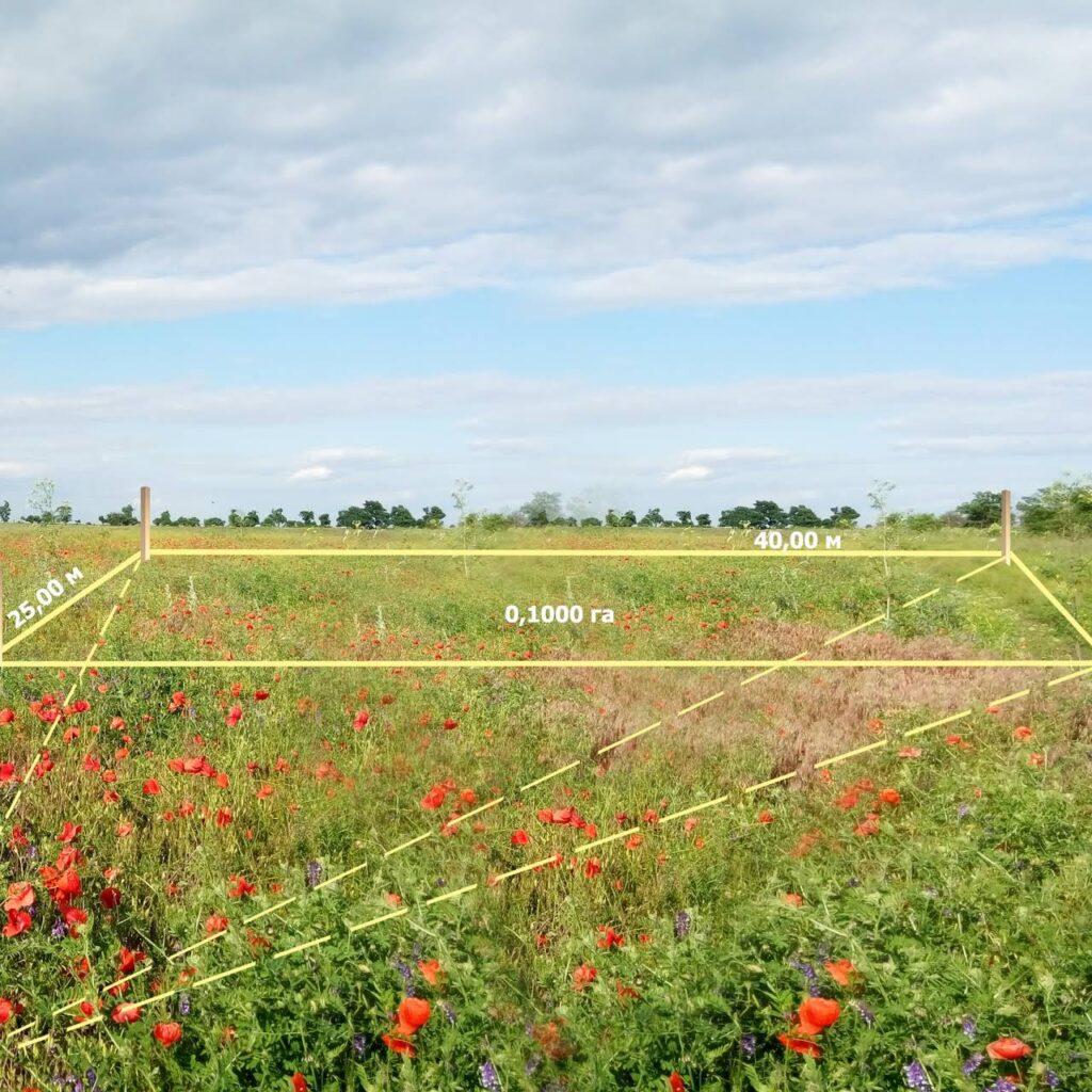 приватизировать землю в киеве