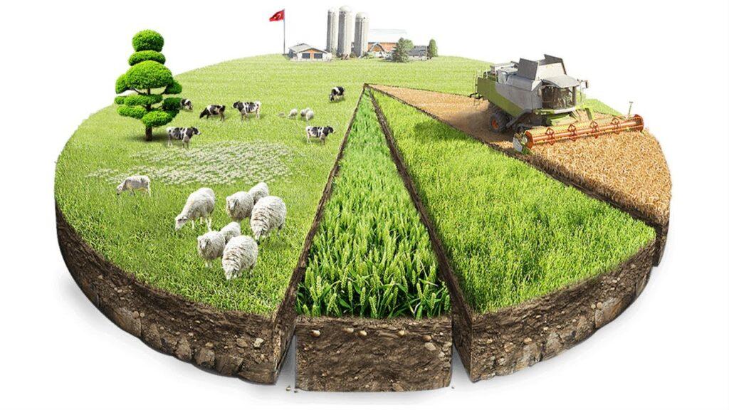 бесплатная приватизация земли